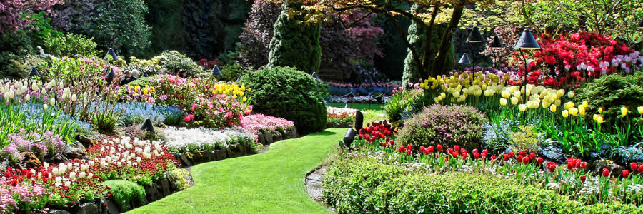 Flowerbed Maintenance And Tree & Shrub Pruning For Boise