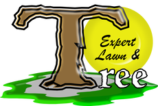 Expert Lawn & Tree Serves Boise, Eagle, Meridian, & Nampa With Full Service Landscape Maintenance